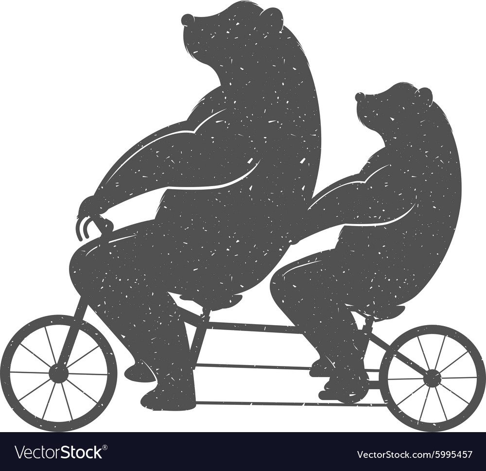 Fun bear vector
