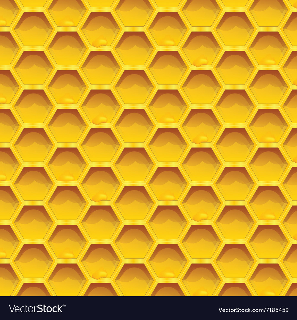 Honeycomb colorfull seamless pattern honeycombs vector