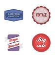 limited edition vintage mega discont dig sale vector image