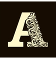Elegant capital letter A in the style Baroque vector image
