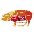 cuts of pork - meat diagrams vector image