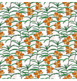 seamless pattern with sea buckthorn bright berry vector image