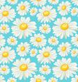chamomile field seamless pattern vector image