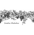 seamless grapevine sketch vector image