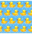rubber duck seamless pattern vector image