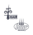 two hair transplantation logo logotype templates vector image