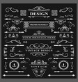 set of vintage decorations elements flourishes vector image