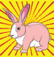 bunny rabbit easter pop art vector image