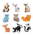 Cartoon domestic cats vector image