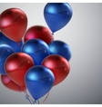 Red And Blue Balloon Bunch vector image