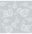Light seamless lace fabric with floral pattern vector image