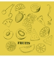 Background with fruit-06 vector image