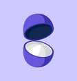 simple flat open blueberry vector image