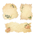 Vintage paper pieces with floral vector image vector image