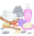 accessories for bath vector image