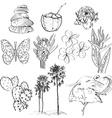 Set of doodle sketch Strelitzia plumeria lotus vector image