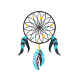 flat style of dream cather vector image