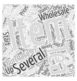 Retail As A Home Business Word Cloud Concept vector image