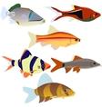 Aquarium fish-2 vector image