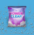 detergent design on bag package vector image