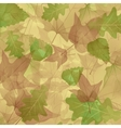 foliage plants leaves background maple maple leaf vector image