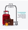 Bags of baggage and luggage concept vector image