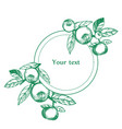 round frame with branches vector image
