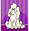 poodle dog cartoon vector image vector image