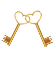 golden key opens the heart vector image