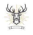 deer head with sun burst vector image