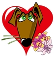 dog with a bouquet vector image