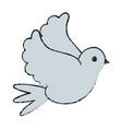 white bird of peace vector image