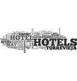 a guide to torrevieja hotels text word cloud vector image vector image