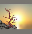 landscape on the sunset a curved tree without vector image