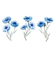Cornflower watercolor set vector image