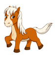 little horse isolated on white vector image