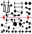 bodybuilding equipment vector image vector image