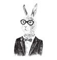 dressed up bunny boy in hipster style vector image