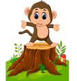 cartoon happy monkey dancing on tree stump vector image