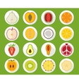 Fruit icon set with long shadow vector image