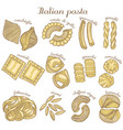 colored set of different pasta shapes vector image