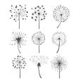Monochrome Dandelion Set vector image