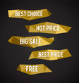 Golden Low Poly labels vector image