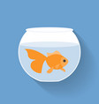 gold fish in bowl vector image