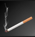 realistic cigarette with smoke isolated vector image