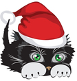 kitten wearing a santa claus hat vector image vector image