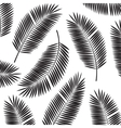 Palm Leaf Frame Background vector image vector image