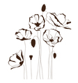 Poppy design vector image vector image