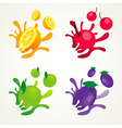 fruit splash set vector image
