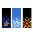 Vertical banners with abstract flowers vector image